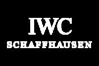 iwc orologio assistenza autorizzata certificata
